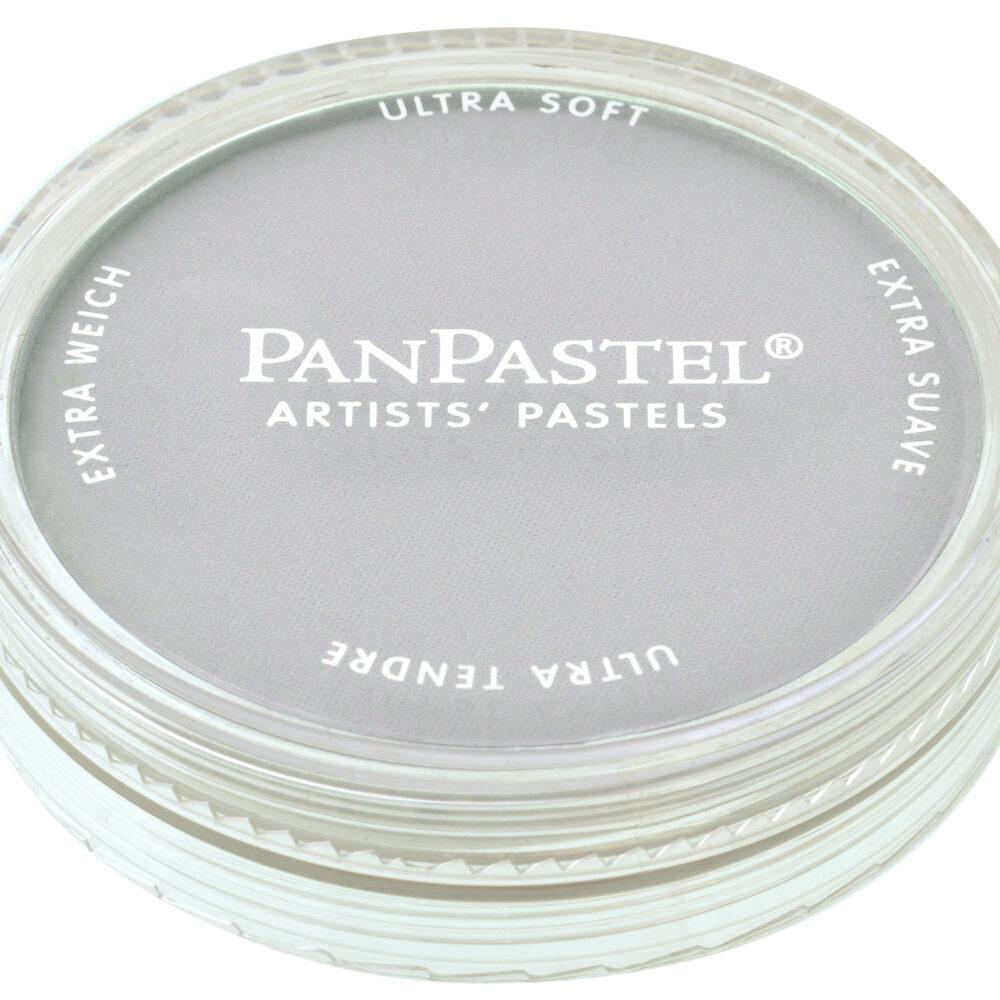 Paynes Grey Tint